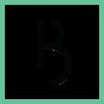 icon-logo-main